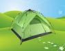 Item #: tent-199-1