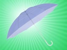 clear-umbrellas